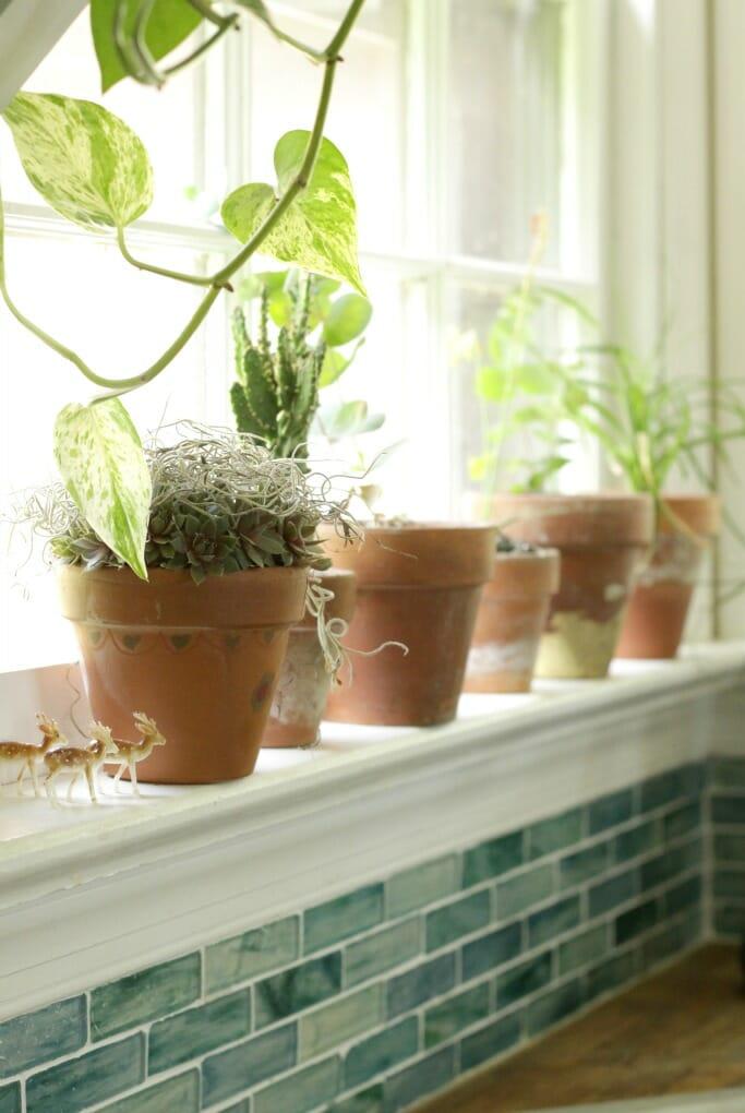 Terra Cotta Pots in Window Sill