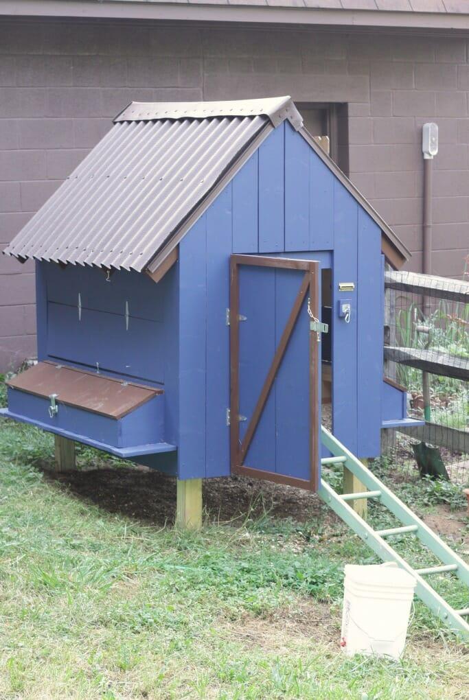 Cobalt Blue DIY Chicken Coop