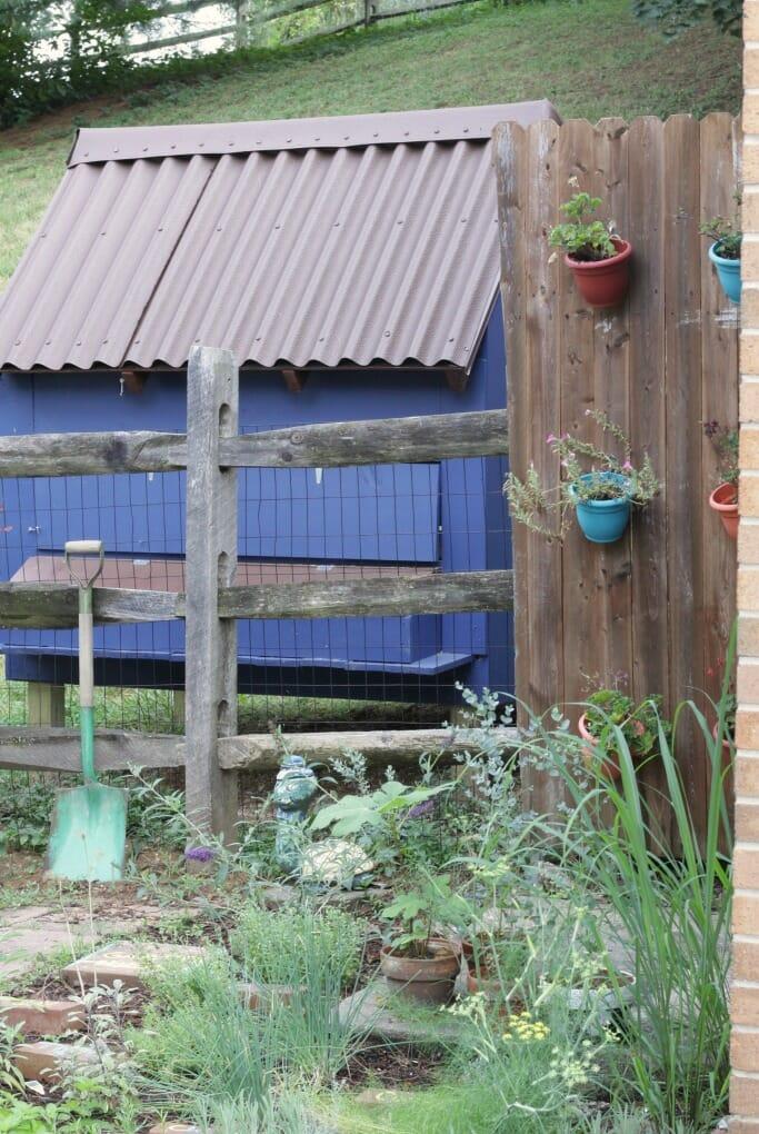 Coop behind herb garden