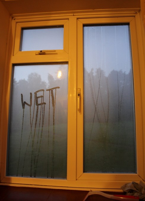 Home problem Damp condensation on window dripping wet