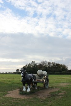 sarah lucas british artist sculpture 2006 perceval at snape maltings suffolk