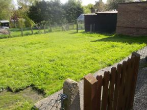 the start of a garden makeover on the cassiefairy blog