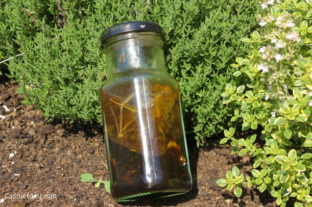DIY homemade herb and balsamic oil dressing using herbs from the garden-2