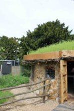 Jimmy Doherty Farm in Suffolk-4