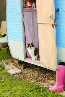 Fitting a caravan into the garden