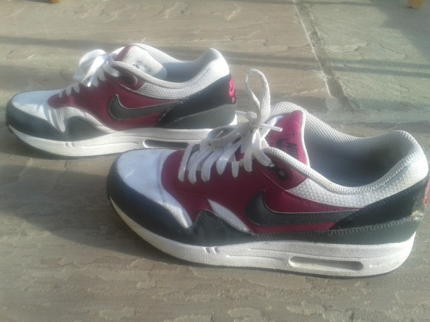 todds travels nike trainers