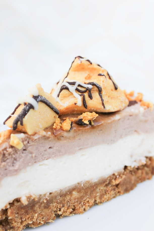 Pact Cinder Toffee Coffee Cheesecake_-9
