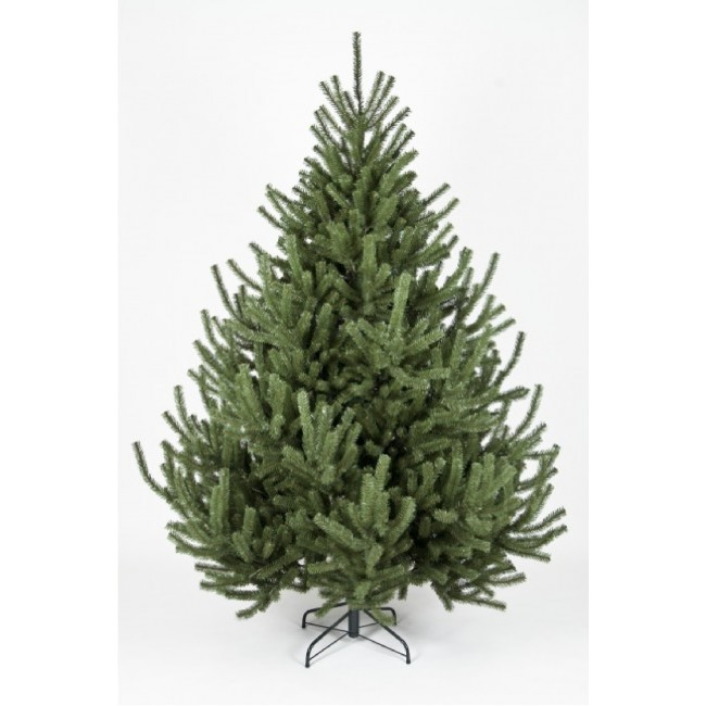 mountain pine christmas tree