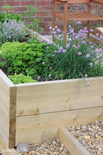 spring garden veggit patch-2