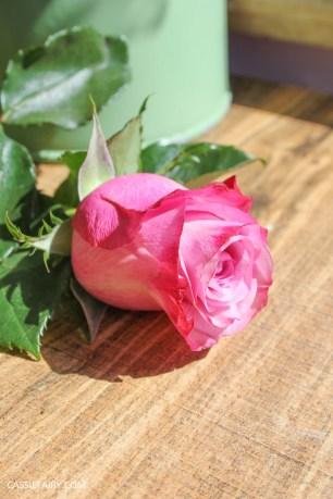 roses bouquet of flowers and vintage caravan_-12