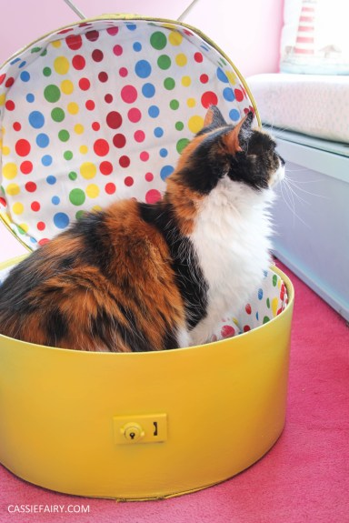 diy cat hat box - suitcase bed for pets-28