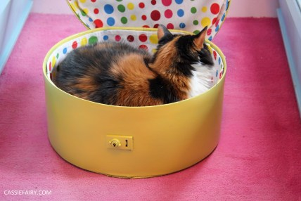 diy cat hat box - suitcase bed for pets guide