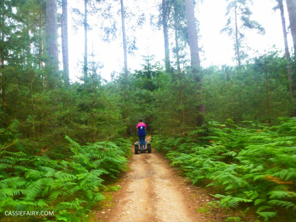school summer holiday activity high lodge thetford forest segway adventure go ape review-12