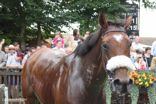 newmarket-racecourse-summer-saturdays-race-day-music-event-14