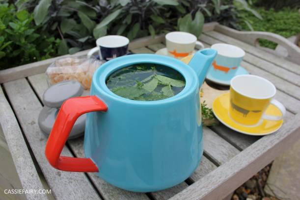 healthy moroccan mint ginger lemon herb infusion tea recipe-9
