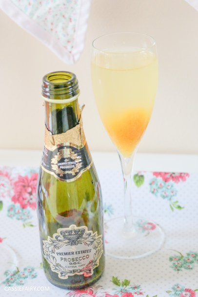 wedding hen party queens birthday celebration idea diy fruit puree ice cubes recipe-22
