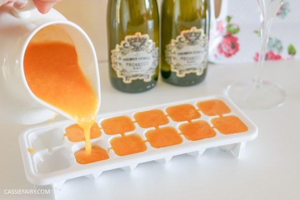 wedding hen party queens birthday celebration idea diy fruit puree ice cubes recipe-3