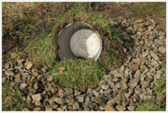 bucket-for-eco-pond-with-grass