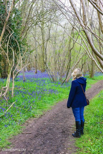 day out wild flower walk spring bluebell woods-3