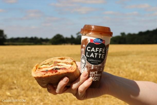 friYAY recipe layered picnic rolls sandwich filling ideas and inspiration-18