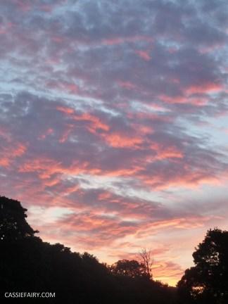 photography sunset golden hour photo sun silhouette-6
