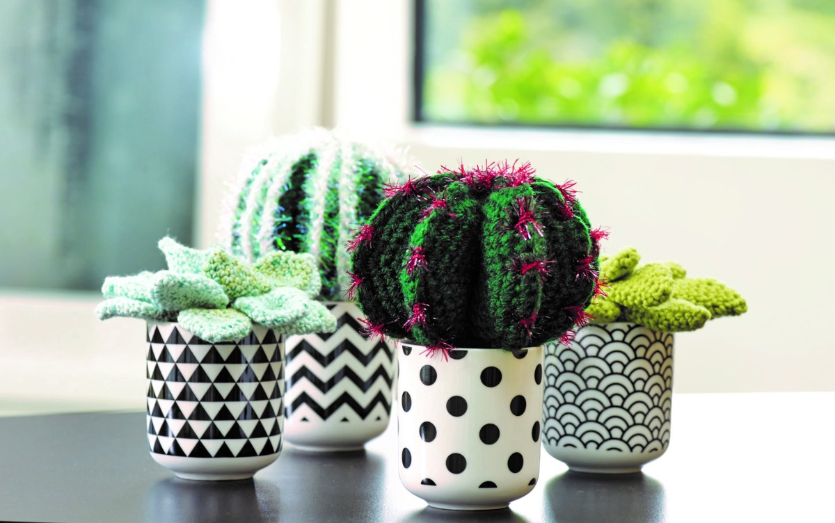How to crochet a Devil's Tongue cactus PLUS win Crocheted Succulents book