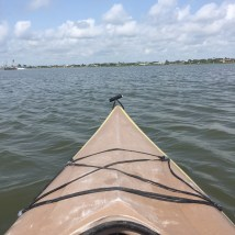 The view from the kayak!