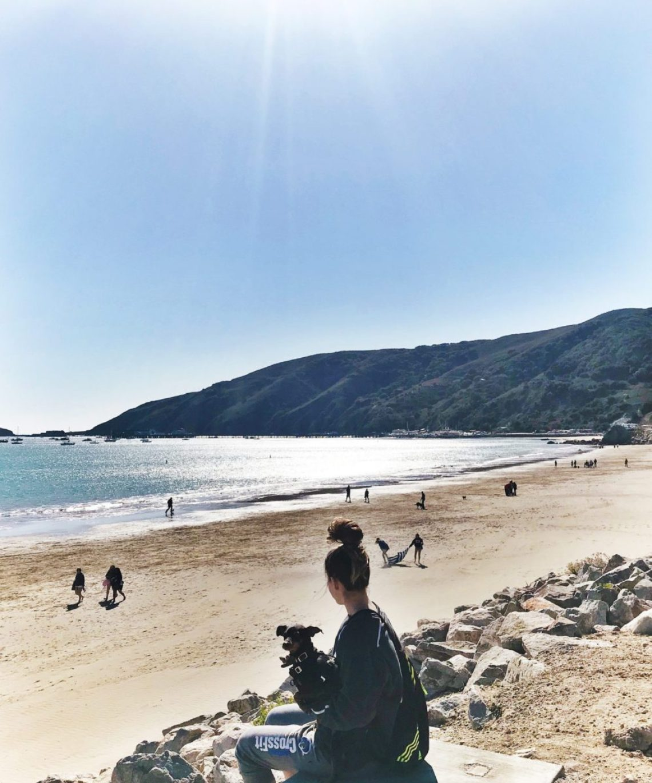 panorama of avila dog beach