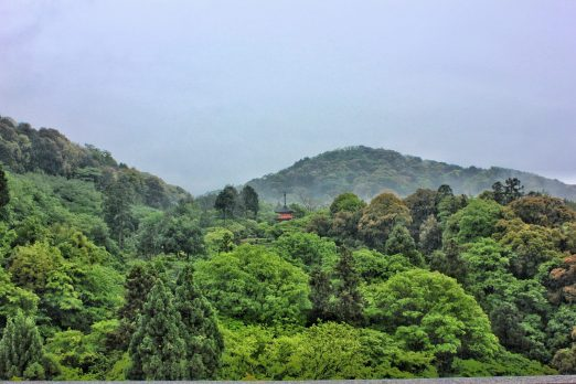 Solo Travel in Kyoto