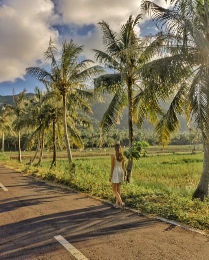 Karimunjawa Guide - Costs, Example Itinerary & Things to Do