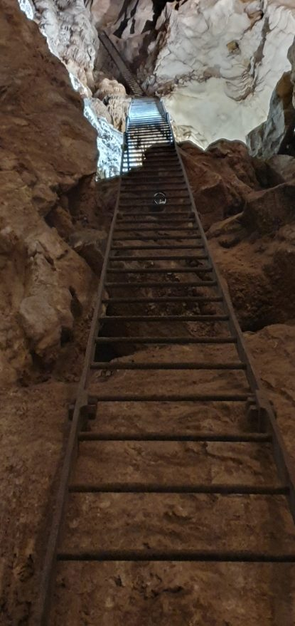 A very tall ladder plunging into the dark at Jenolan Caves