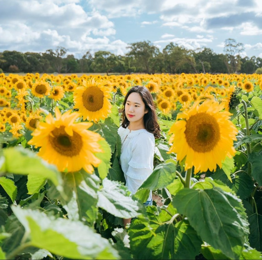 Sunny is a student from South Korea, currently isolating in Australia