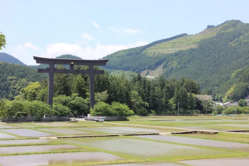 Hiking the Kumano Kodo is an amazing way to see Japan's nature