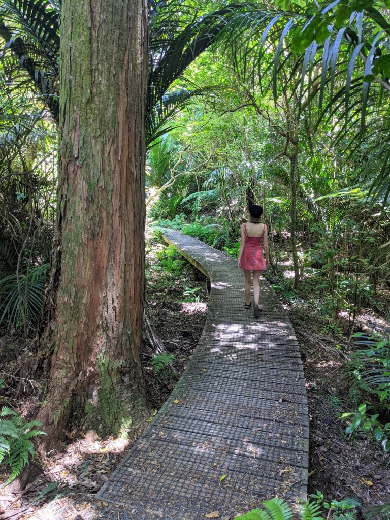 Hikes in the Bay of Islands