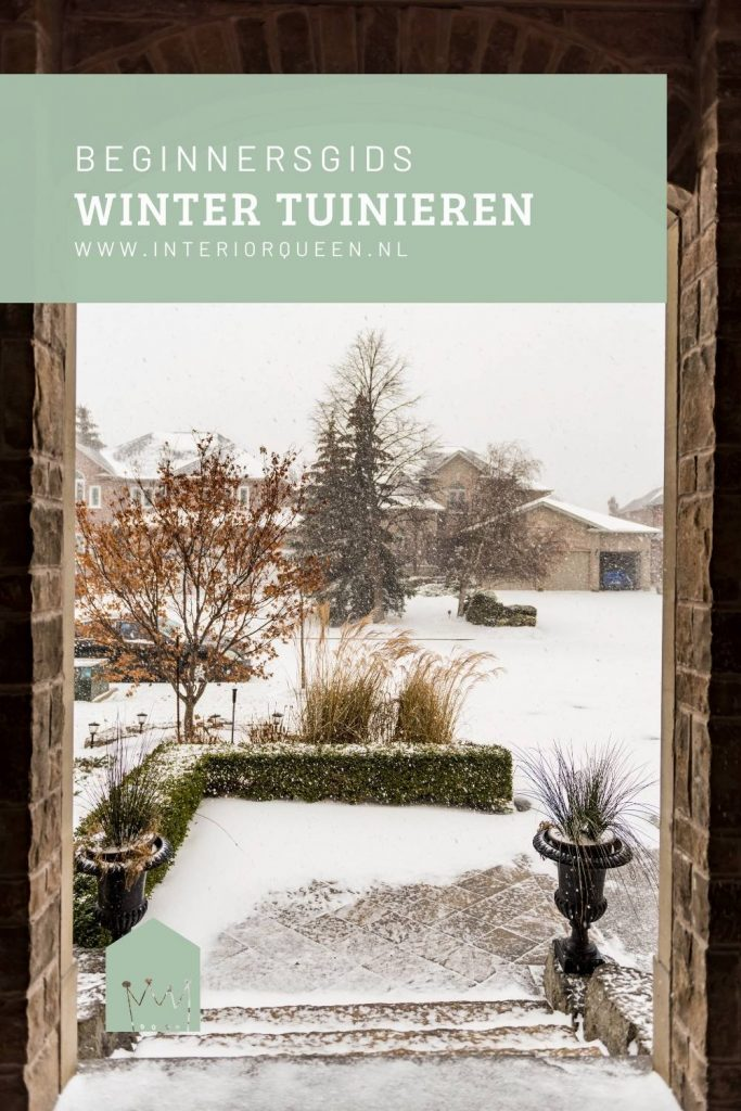 Pinterest winter tuinieren voor beginners
