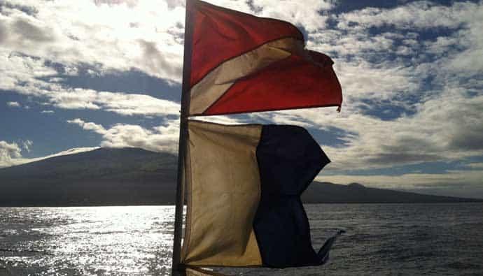 diver down flag and alfa flag