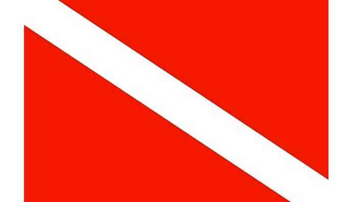 diver down flag large