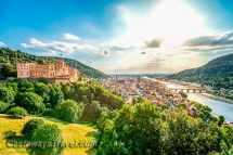 Mannheim Heidelberg excursion