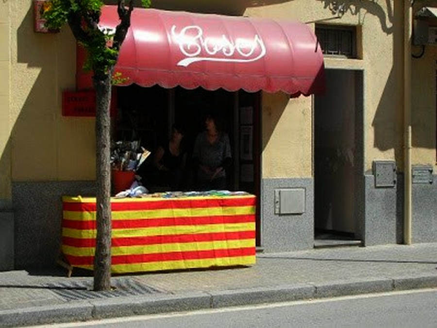 Sant Jordi 2008_2