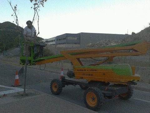 Comença la esporga dels arbres de Castellbell i el vilar.
