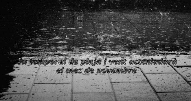 portada Un temporal de pluja i vent acomiadara el novembre