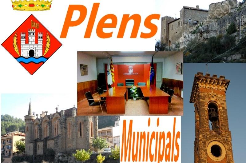 Ple de comiat als regidors del mandat municipal 2011-2015 a l'Ajuntament de Castellbell i el Vilar .