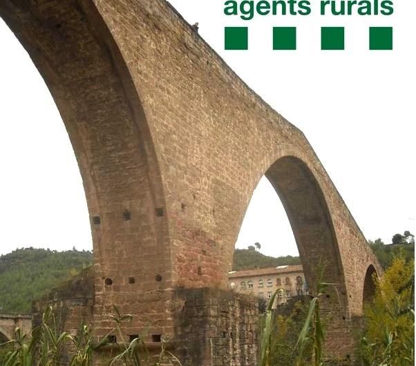 Un veí de Castellbell i el Vilar denunciat pels Agents Rurals, per haver matat i llançat la seva gossa al pont vell del Burés