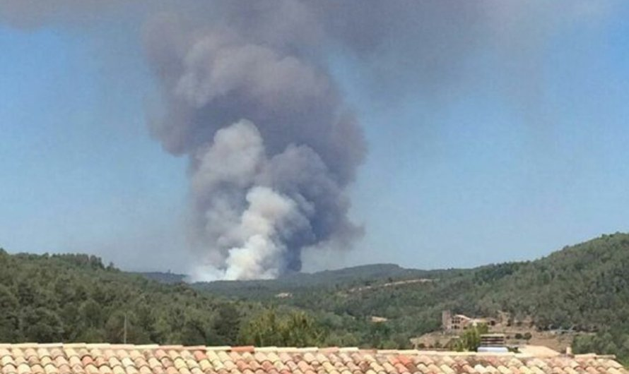 L'incendi forestal a Sant Feliu Seserra estabilitzat