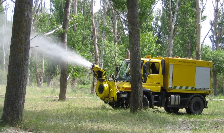 La Generalitat vol reduir el risc d'ignició en la propagació del foc pel Borrisol.