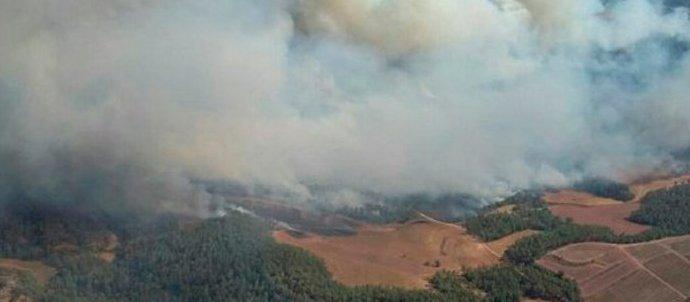L'incendi forestal d'Artés establitzat