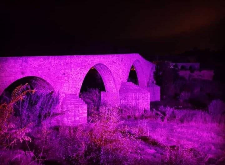 La nit violeta tenyeix la façana de l'ajuntament i el Pont Vell.