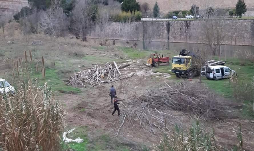 Per fi netejen la llera del riu Llobregat al seu pas a la Bauma.