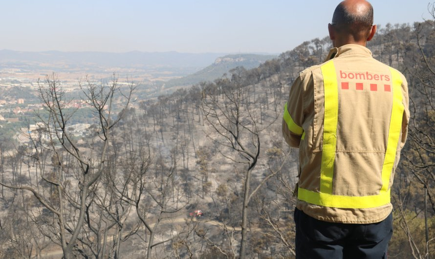 Un estudi alerta que els incendis i les pluges intenses augmenten el risc d'erosió del sòl en boscos mediterranis