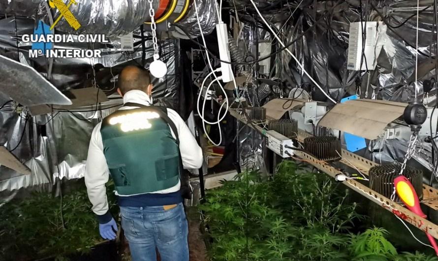Desarticulen una organització dedicada al cultiu de marihuana a una casa ocupada de Monistrol de Montserrat
